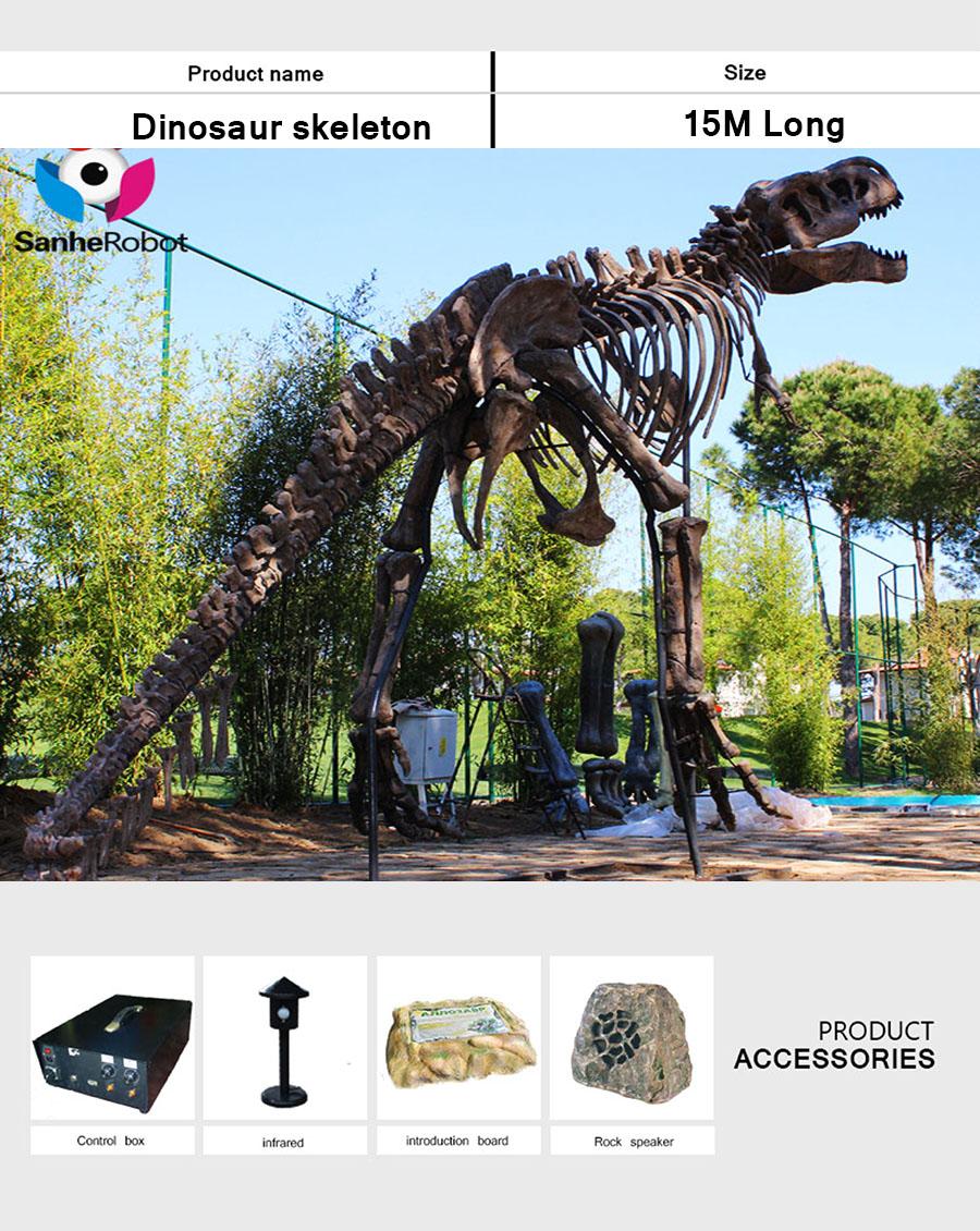 恐龙骨架4
