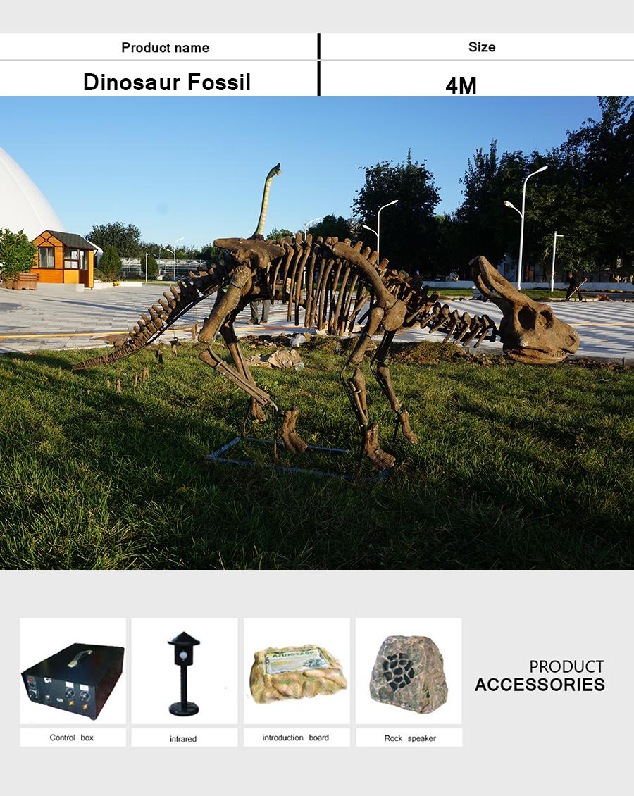 4米恐龙化石